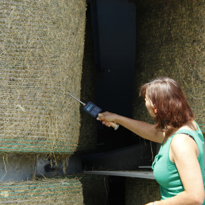 Check moisture while drying haybales