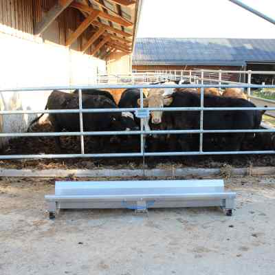 Cattle weighbridge with Agreto Weigh beams